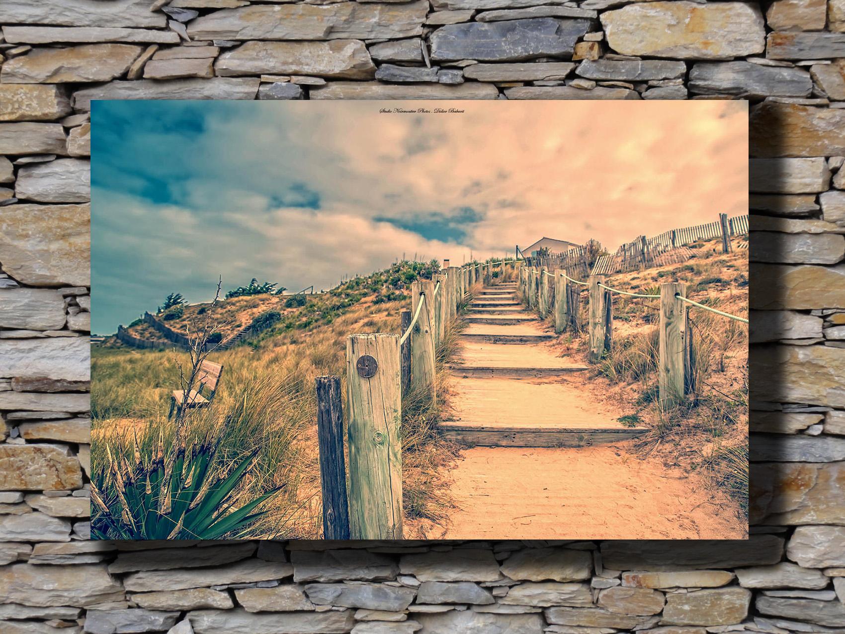 toile montée dans la dune